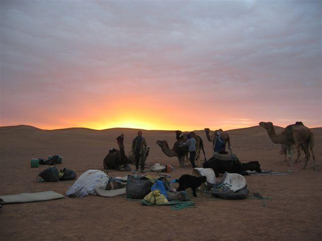 zonsopkomt kamelen woestijn sahara marokko